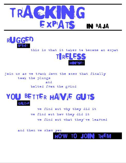 Tracking_expats_final_2